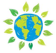 A importância da Educação Ambiental - Meio Ambiente